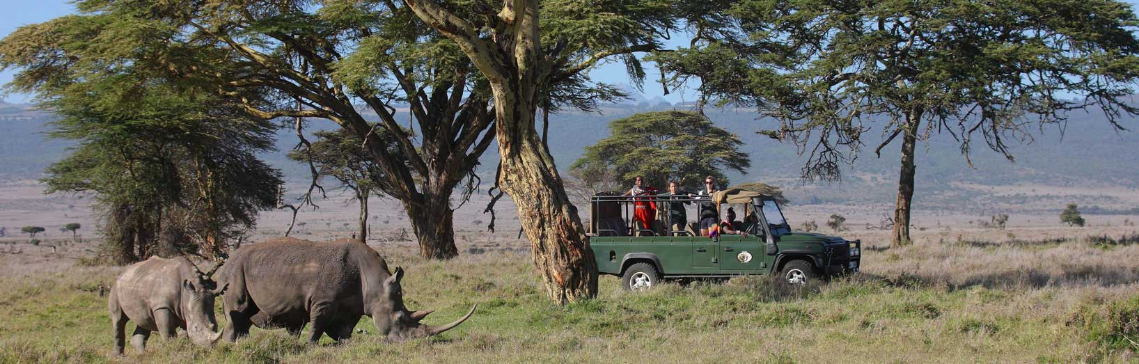 Luxury safaris in Kenya.jpg