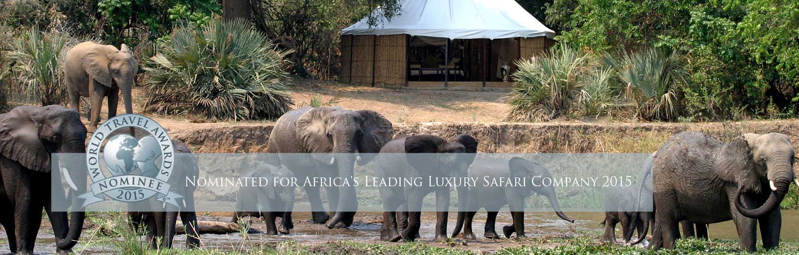 Luxury safaris in Zambia